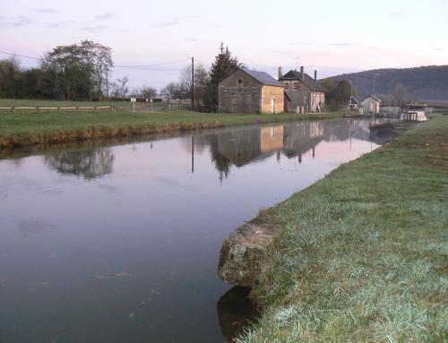 canal des Ardennes : Malmy, poissons à foison
